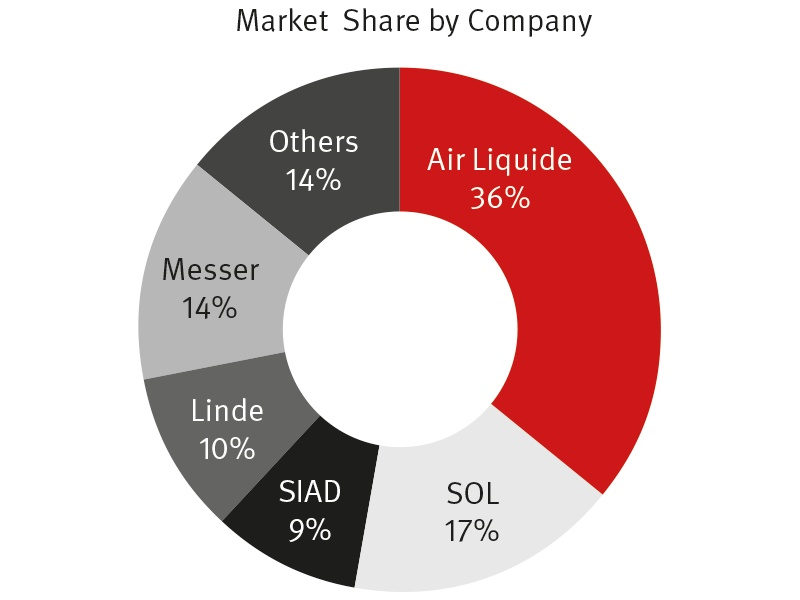 Market Share by Company - February 2015