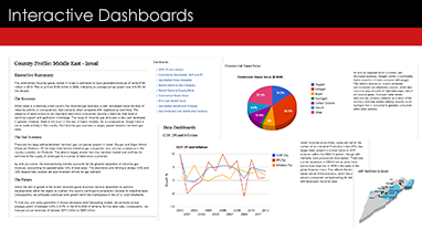 Business+intelligence+dashboards