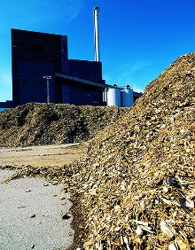 Biomass alternative energy green